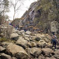 Felsiger Wanderweg auf dem Weg zum Preikestolen