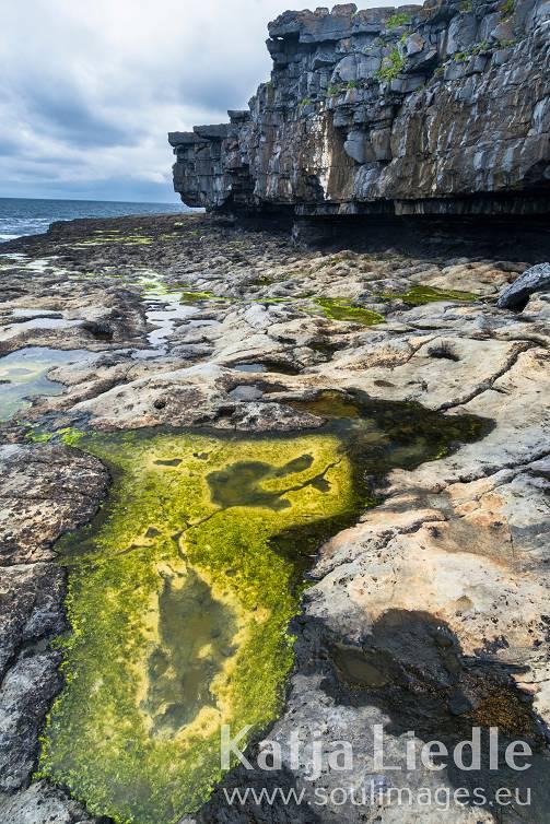 Irland im Detail - Fotos von Katja Liedle