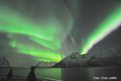 Polarlichter entdecken auf der Hurtigruten