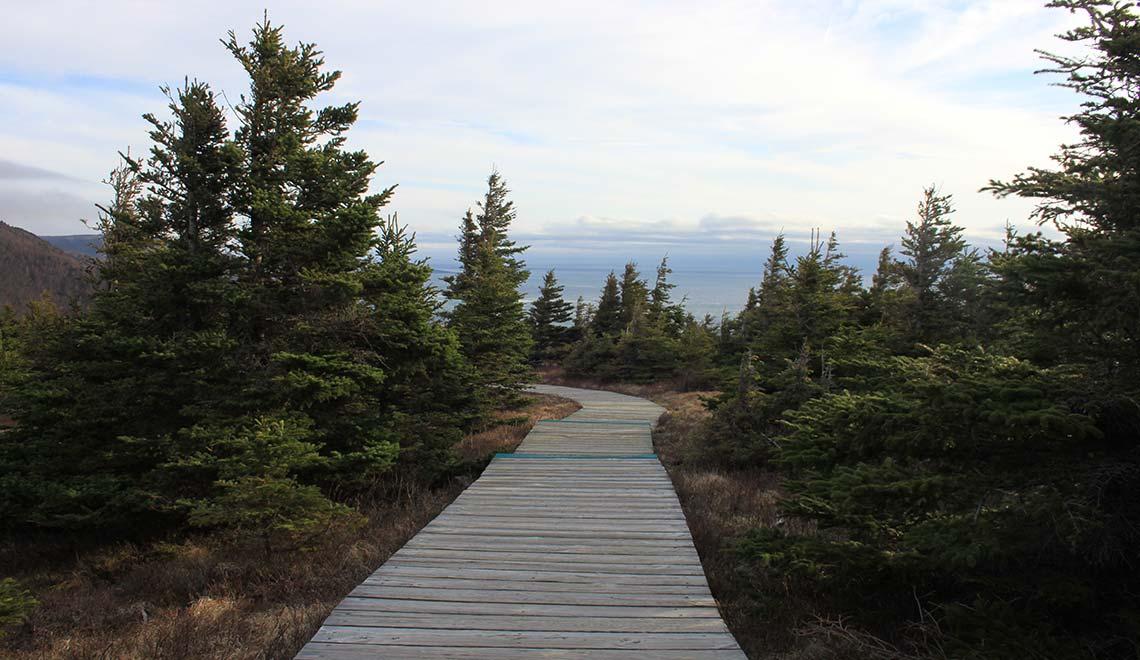 Skyline Trail in Cape Breton