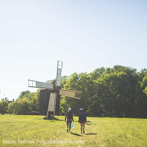 Windmühlen auf Hiiumaa
