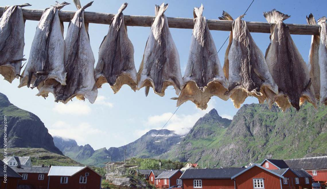 Stockfisch in Norwegen